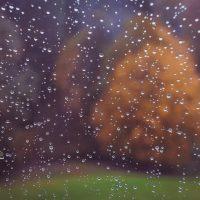 regen-eriert